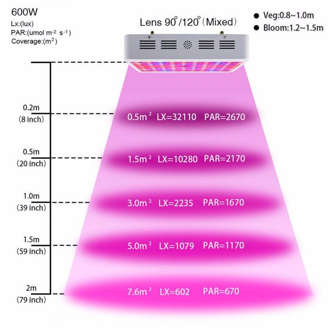 Double Chips 600W LED Grow Light 380-730nm Full Spectrum LED Plant Grow Light For Inddor Plants Flowering and Growing